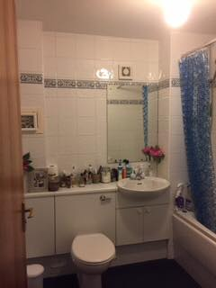 This was the before photo of Alison Ross's bathroom
